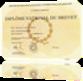 Vign_diplome-brevet-624x441
